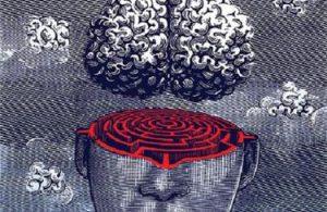 Гипнотический транс и мозг